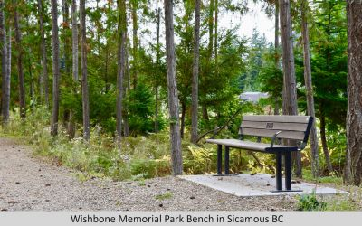 Wishbone Memorial Larson Park Bench with Armrests in Sicamous BC