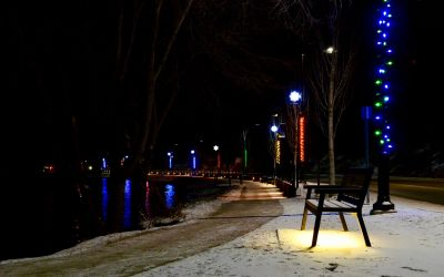 Wishbone-Rutherford-Memorial-Bench-in-West-Kelowna-BC