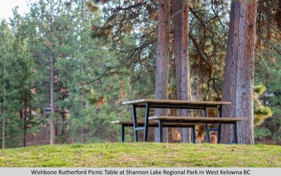 Wishbone Rutherford  Picnic Table at Shannon Lake Regional Park in West Kelowna BC-1