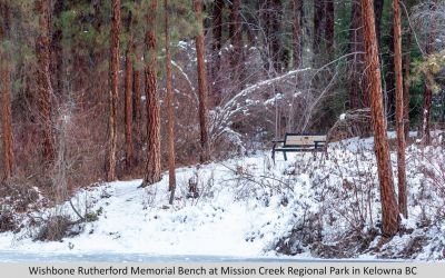 Wishbone Rutherford Memorial Bench at Mission Creek Regional Park