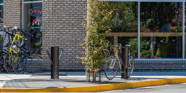 Wishbone-Beselt-2-Space-Bike-Racks-in-Esquimalt-BC