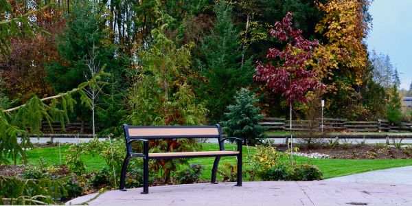 Wishbone-Beselt-Park-Bench-in-Surrey-BC