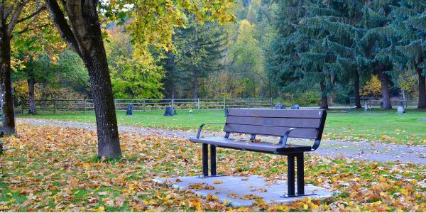 Wishbone-Larson-Memorial-Bench-near-Sicamous-BC-(1)