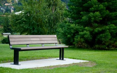 Wishbone-Larson-Memorial-Park-Bench-in-Nelson-BC